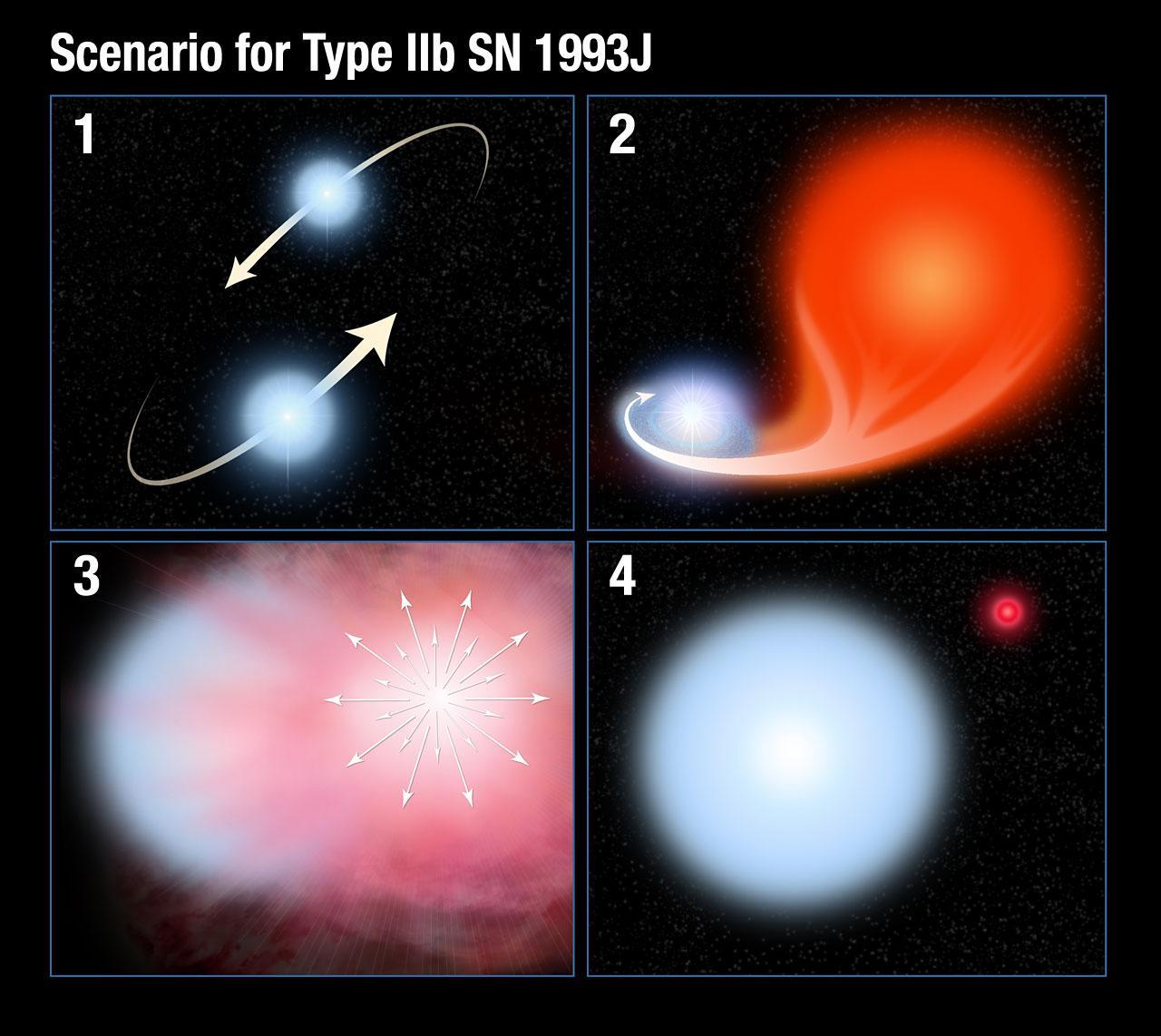 supernova type 2 - HD1280×1142